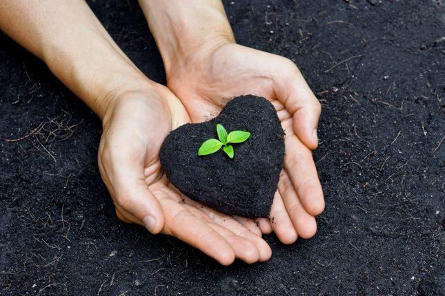 """Компания Green Soil Agro Chemical Company при содействии Ассоциации """"Узтекстильпром"""" проводит ряд презентаций по улучшению качества почвы и урожайности"""