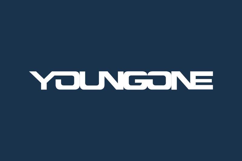 Компания YoungOne предложил изучить вариант о выплате компенсации на затраты транспортных средств в странах Европы для узбекских производителей